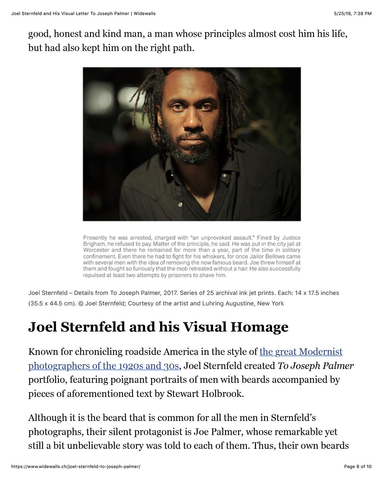 Joel-Sternfeld-and-His-Visual-Letter-To-Joseph-Palmer-_-Widewalls-8.jpg