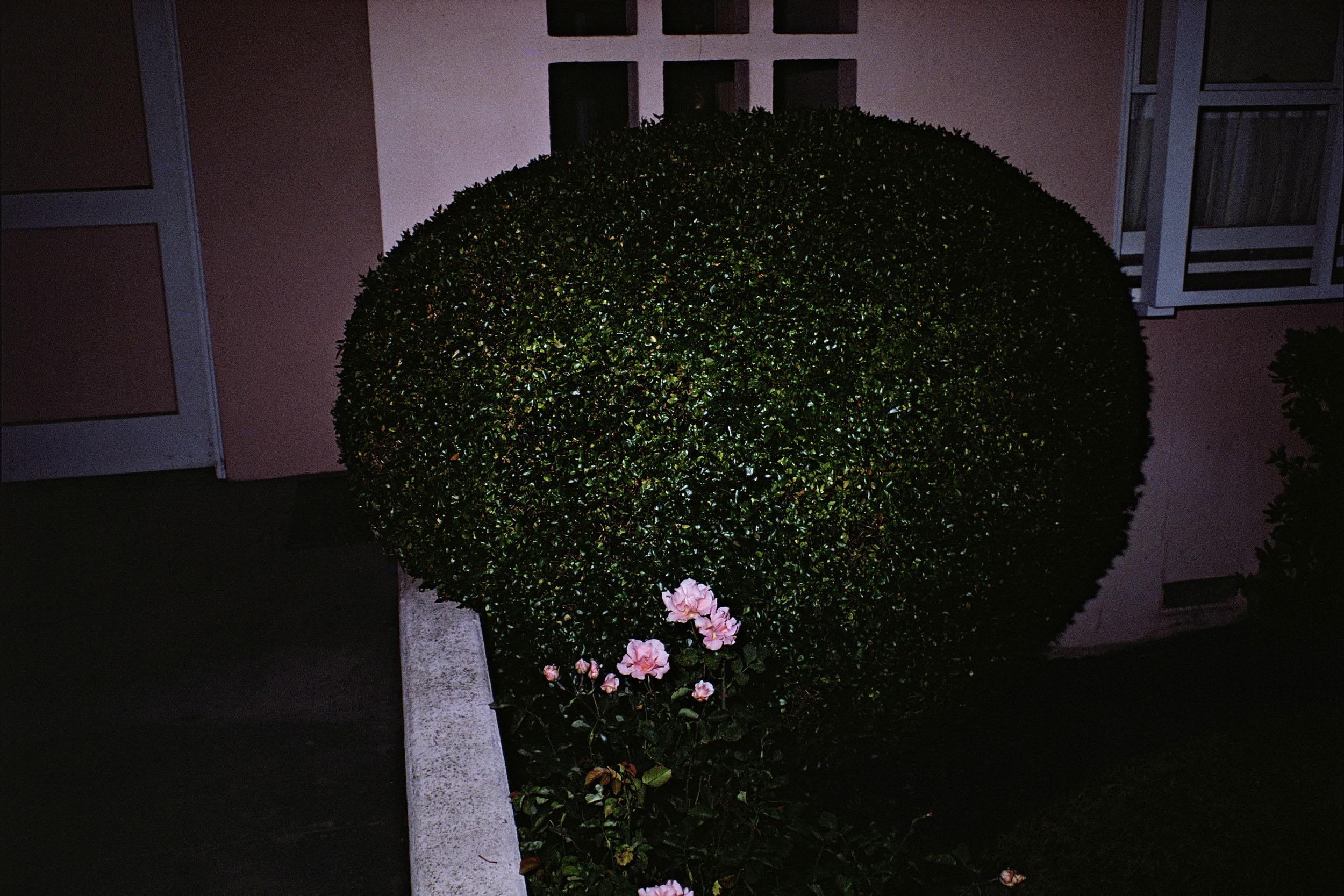 California, (#2), 1977