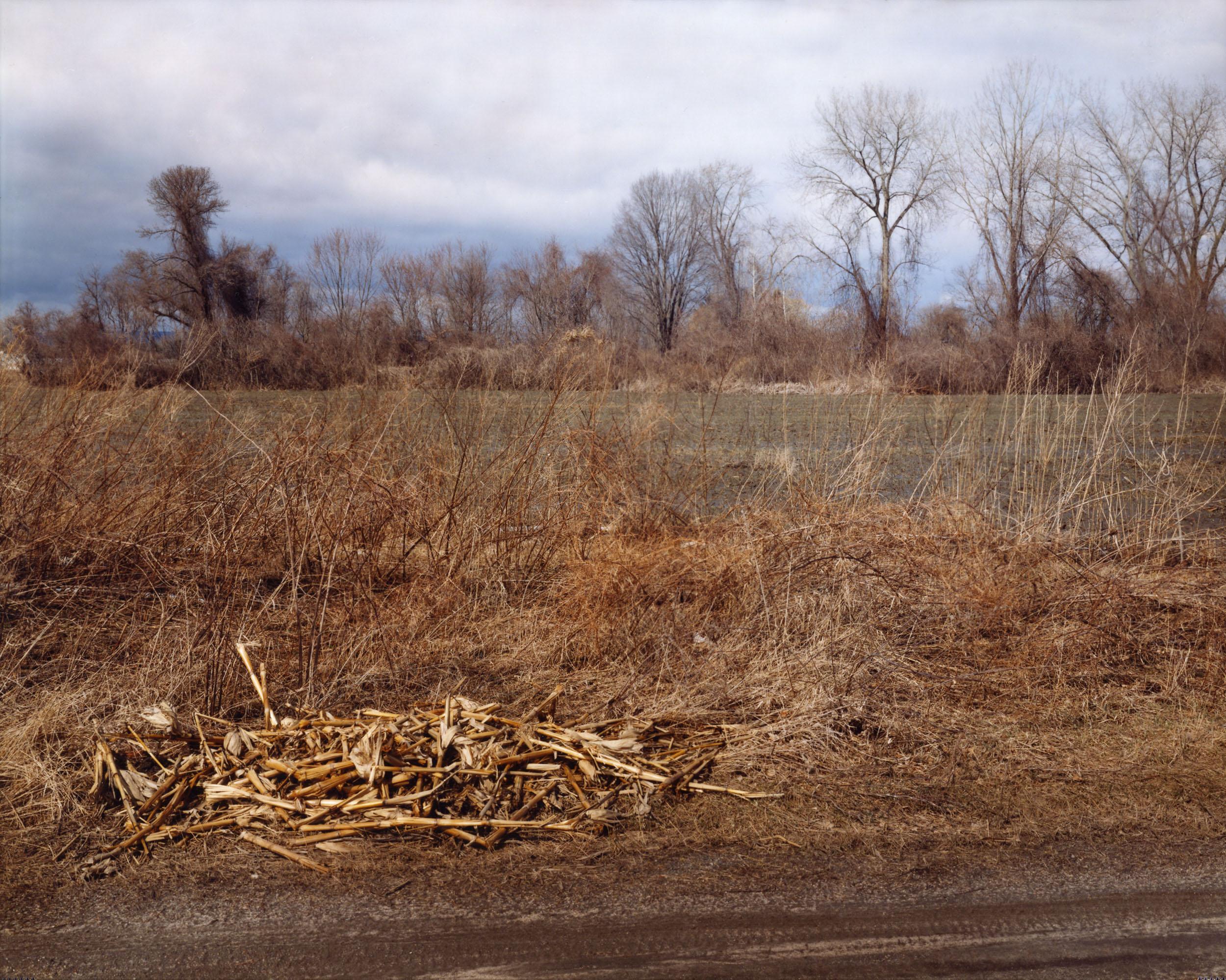 The East Meadows, Northampton, Massachusetts, April 16, 2006
