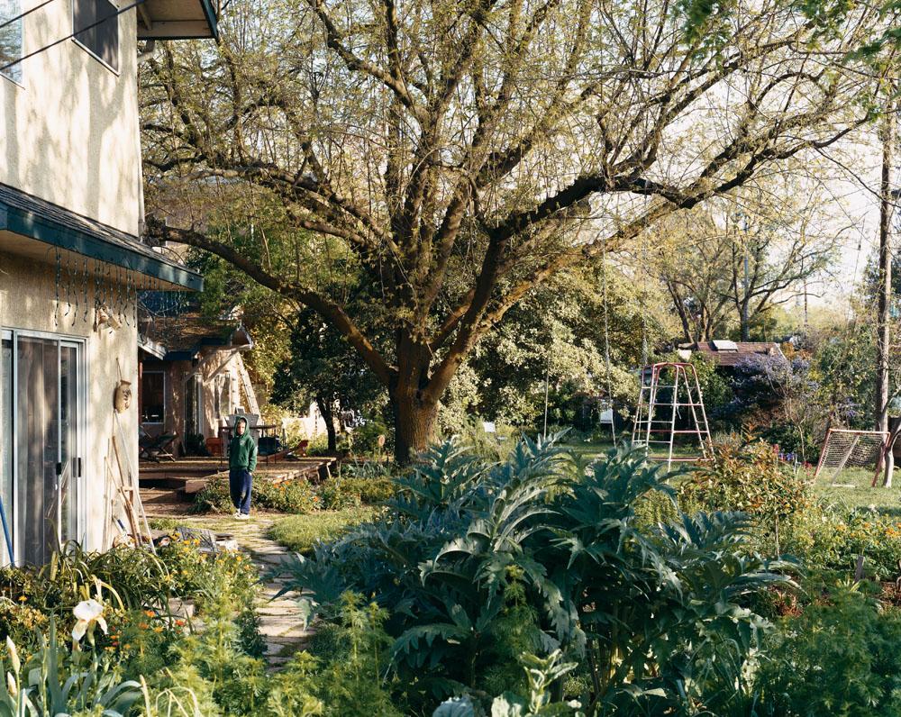 N Street Cohousing, Davis, California, March 2005.