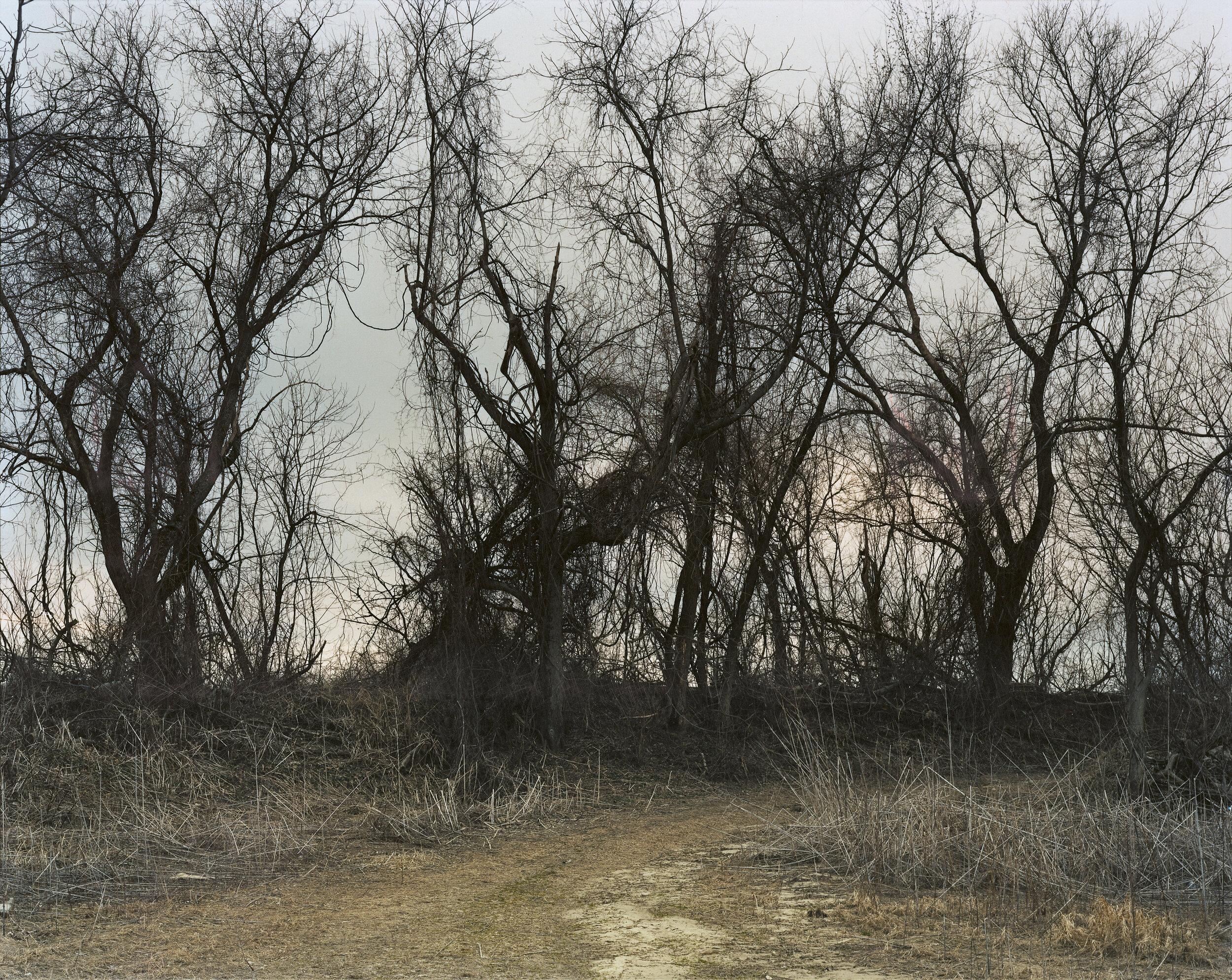 Joel Sternfeld Oxbow Archive