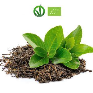 Te Verde Matcha Bio Vegano