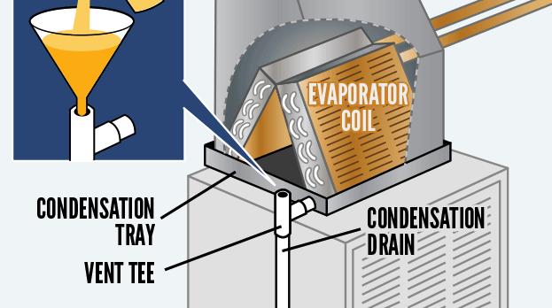 drain-pan-infographic.png