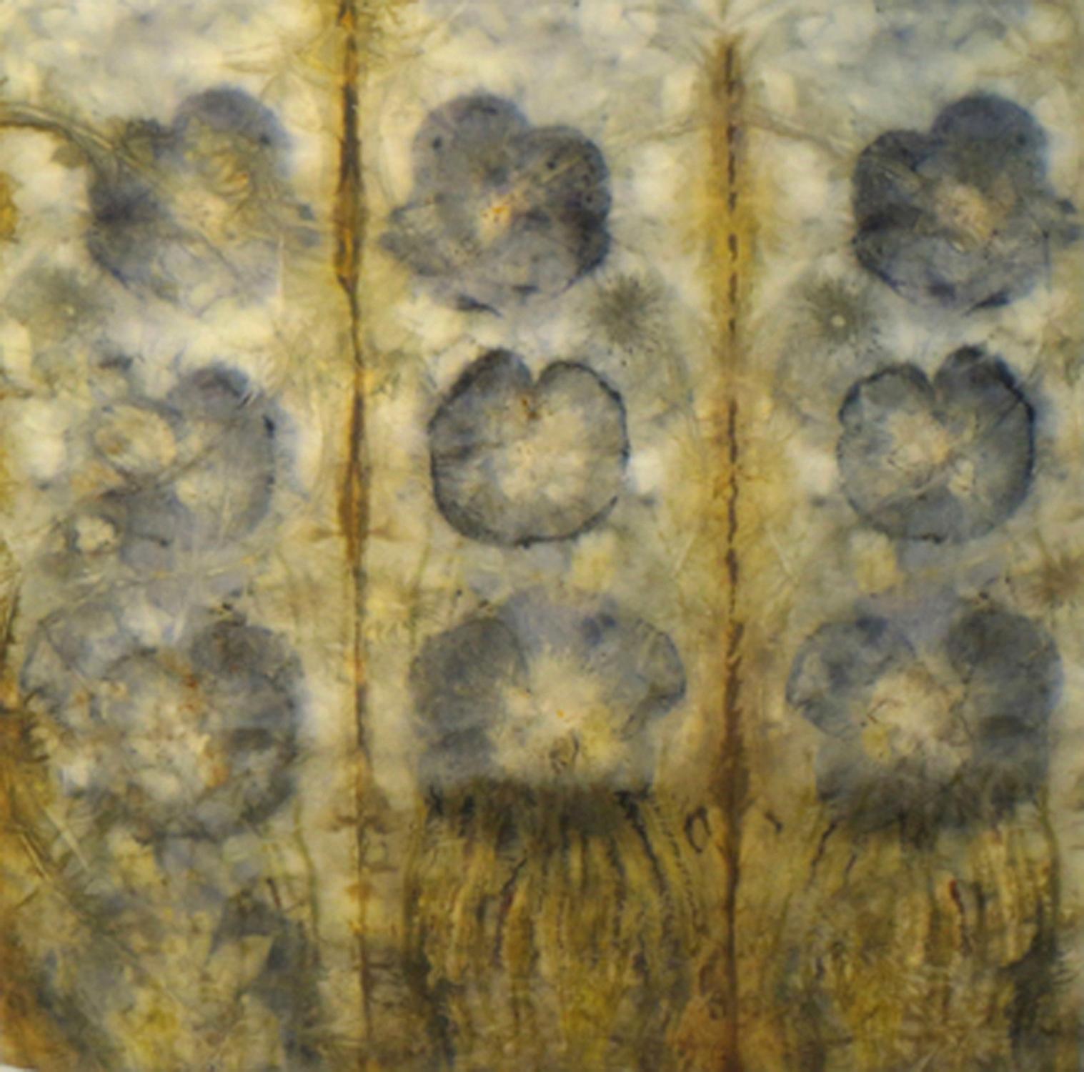 Hibiscus, 31 x 31