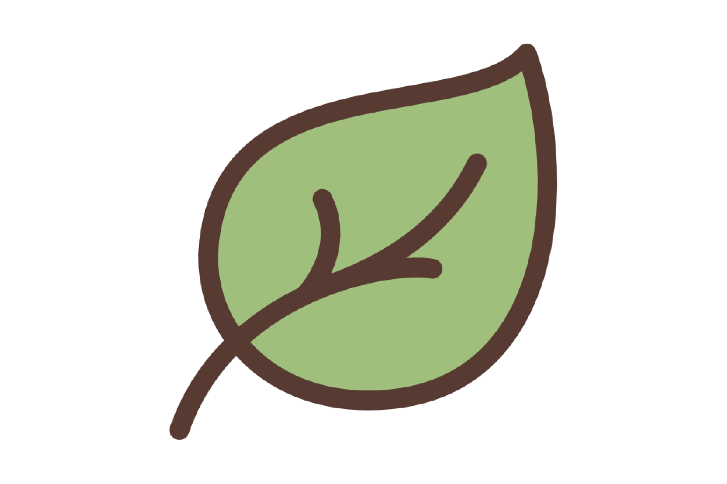 leaf-surround2.png