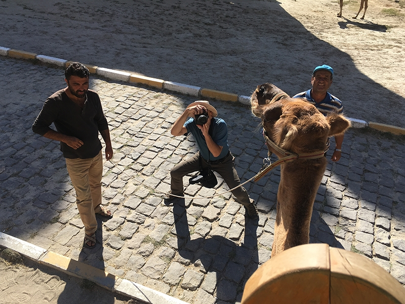 Mike from the top of a camel.