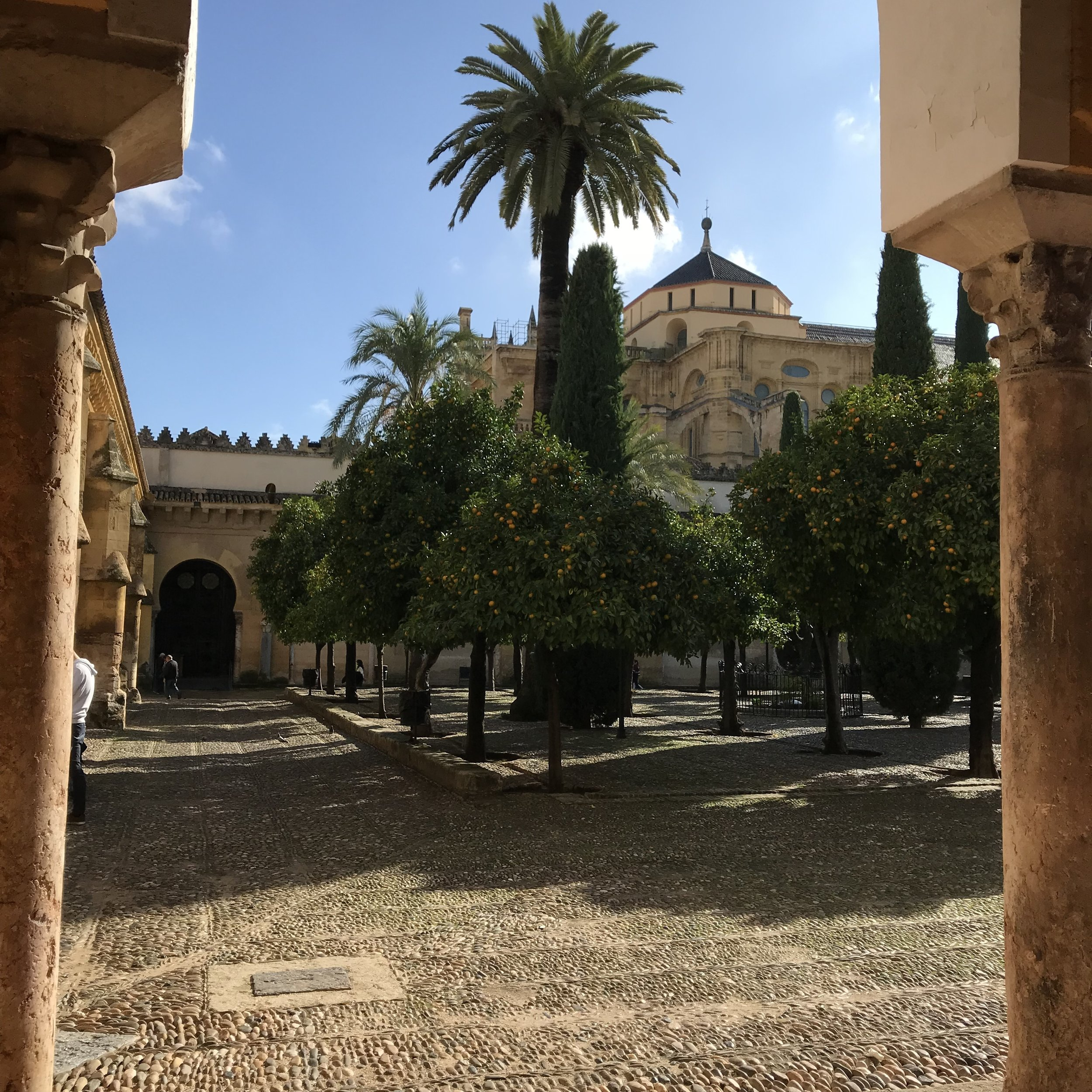 The Mosque-Cathedral of Cordoba. Most extraordinary history. Up to the present ... it's not more than two years ago that Moin's dad was forbidden from praying here by police. Layers and layers of cultures mixing (or not!) in some surprising ways sometimes.