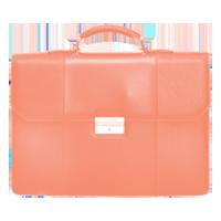briefcase.png