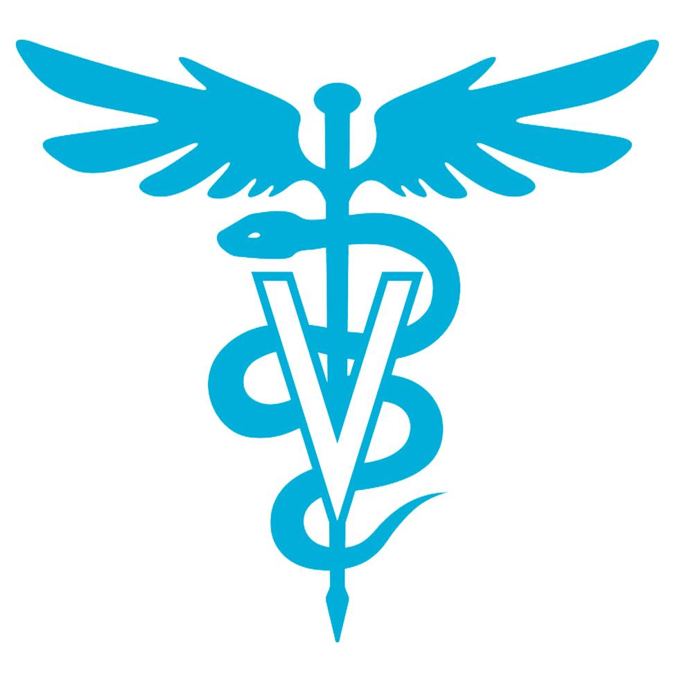 logo-dr-simone.jpg