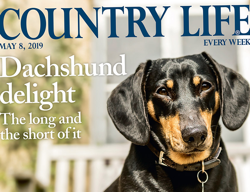 Cover May 8th Country Life crop.jpg