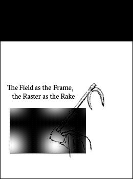 fieldraster1.jpeg