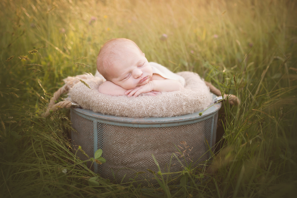 maryland_harford_county_newborn_photographer_outdoor.jpg