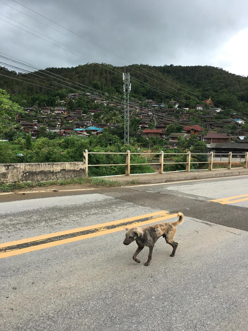 Chiang-Mai,-Thailand