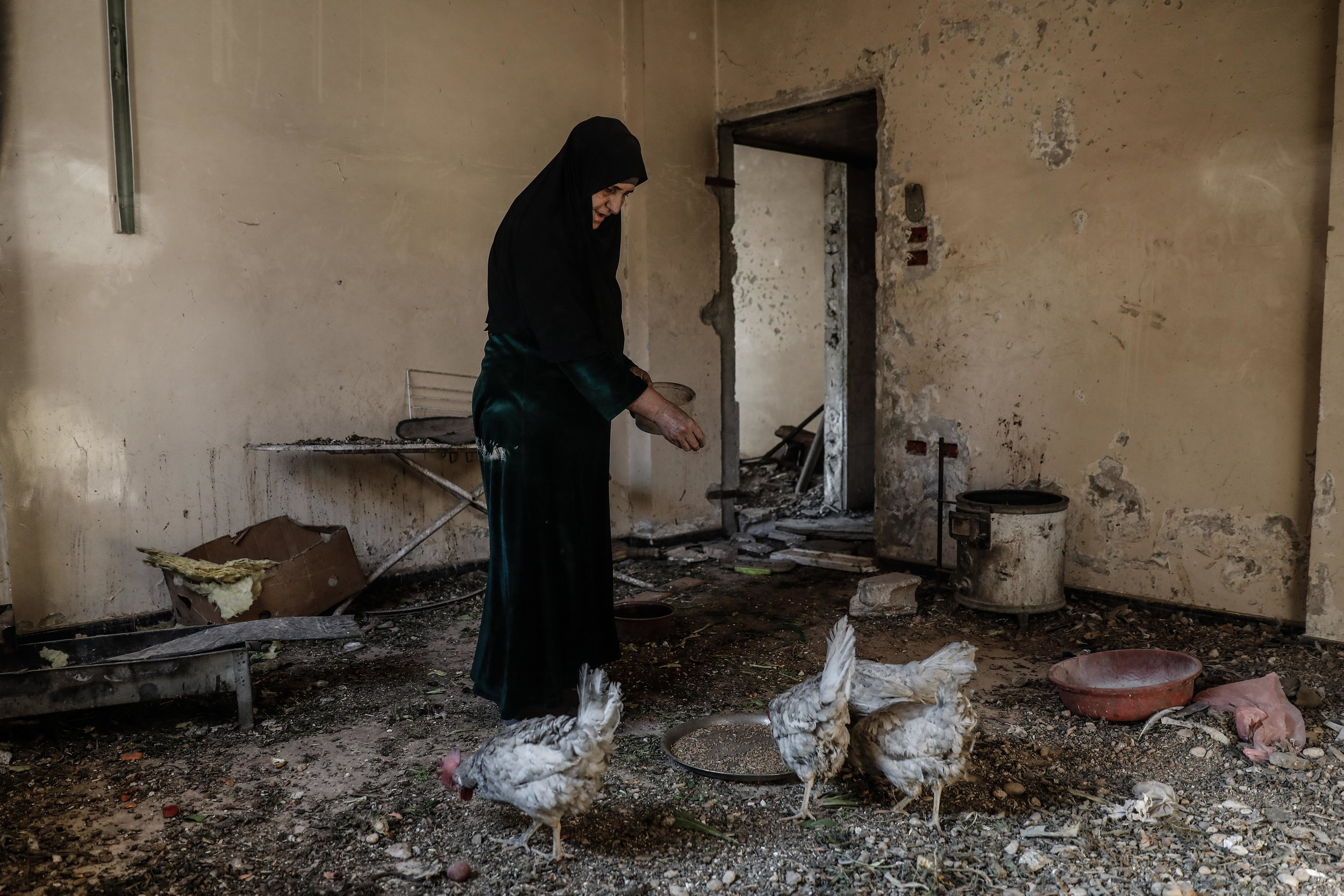Um Mohammed, feeds her chickens at her home in the rebel-held town of Douma.