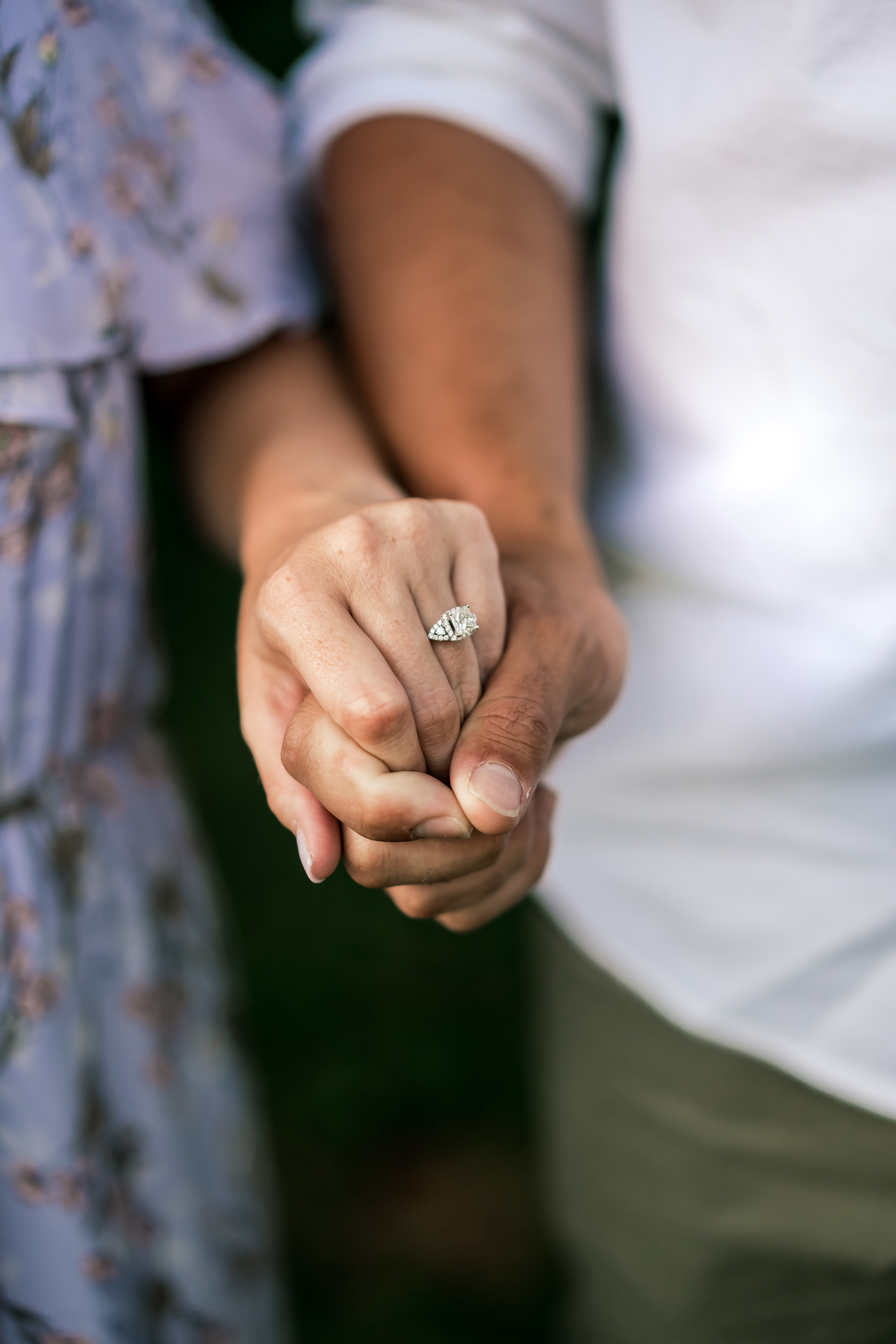 engagement ring field photo louisville