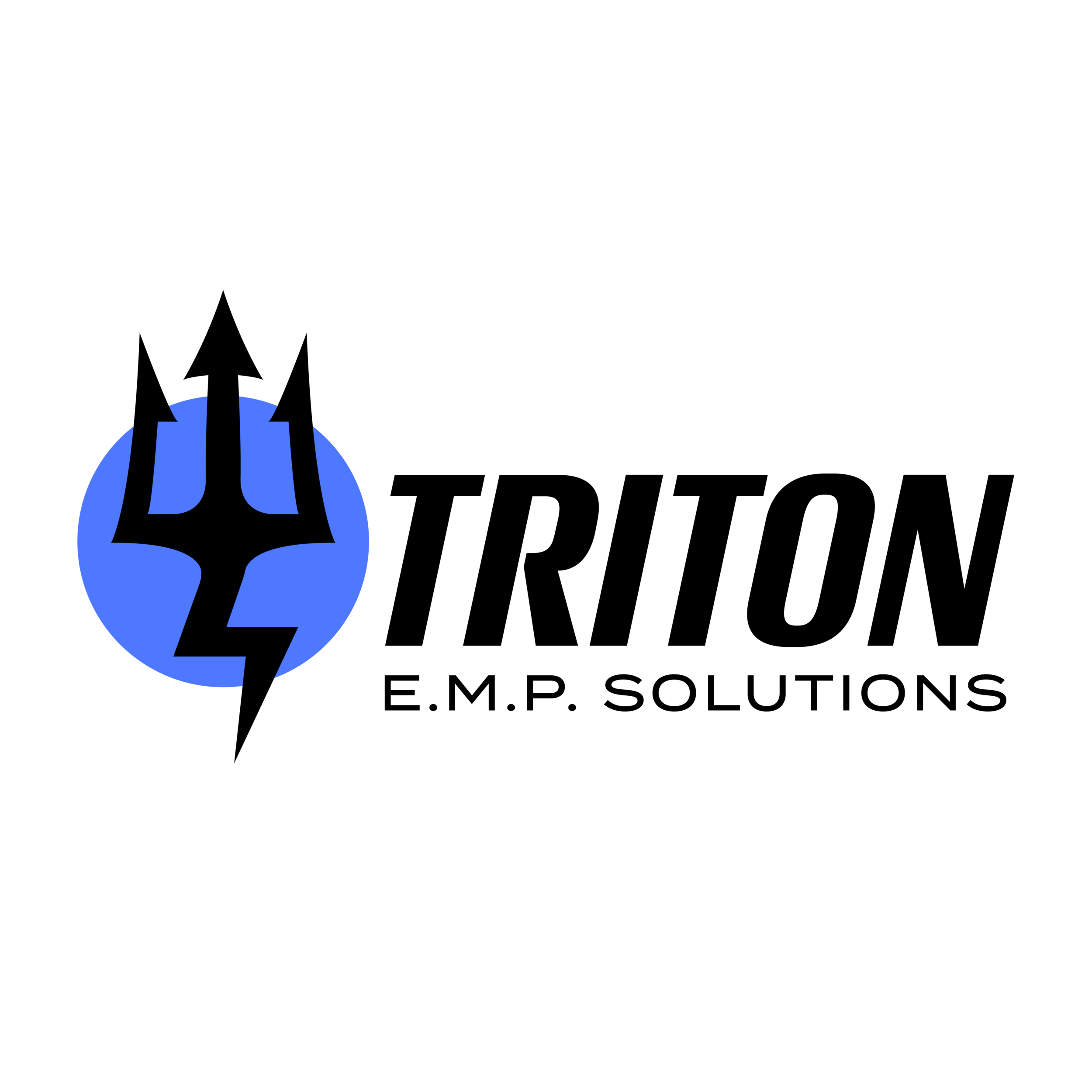 Triton_Logo_Round2-01.png