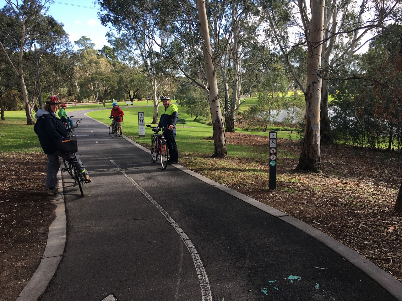 Gardiners Creek Trail in Dorothy Lavers Reserve