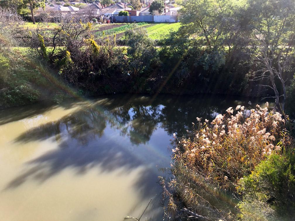 Looking across Merri Creek to CERES market garden.