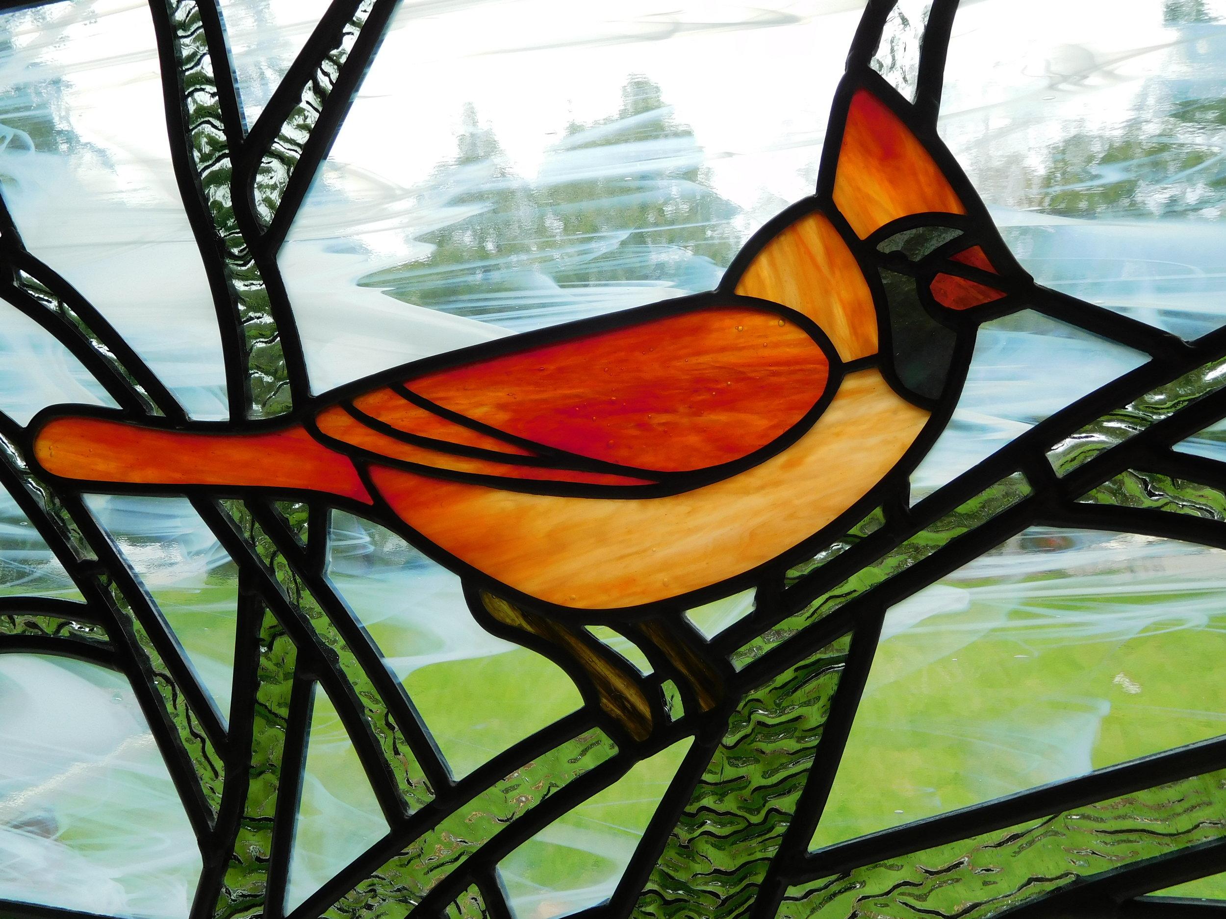 Male Cardinal.JPG