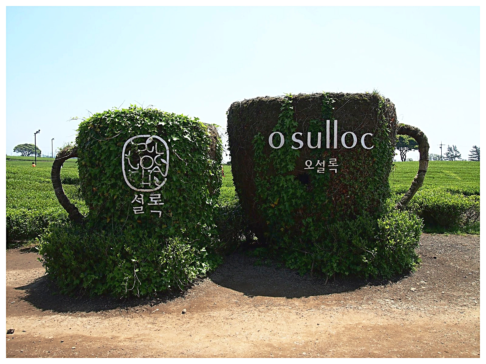 O'sulloc Museum (Green Tea Museum).jpg