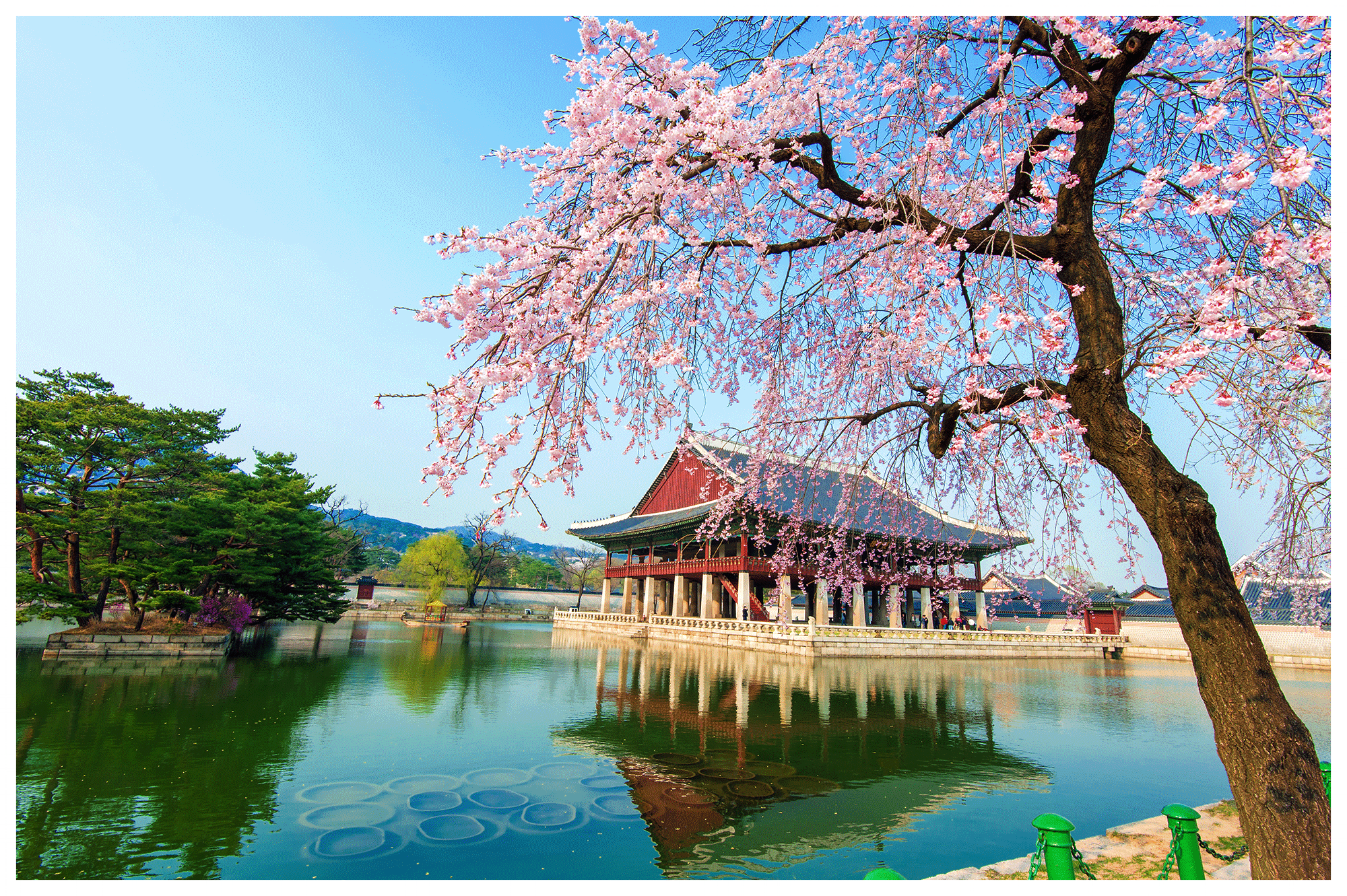 Gyeongbok Palace.jpg