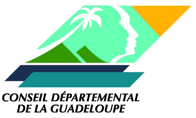 Conseil_Départemental.jpg
