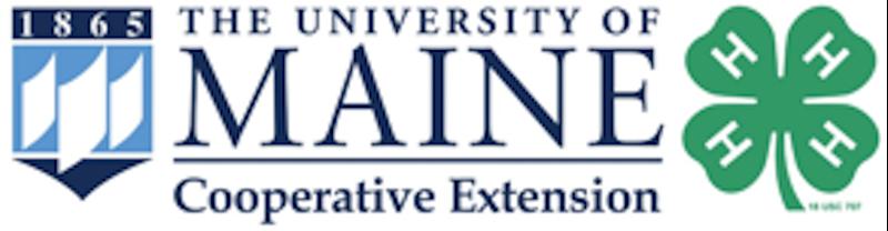 Large 4-H UMaine logo.png