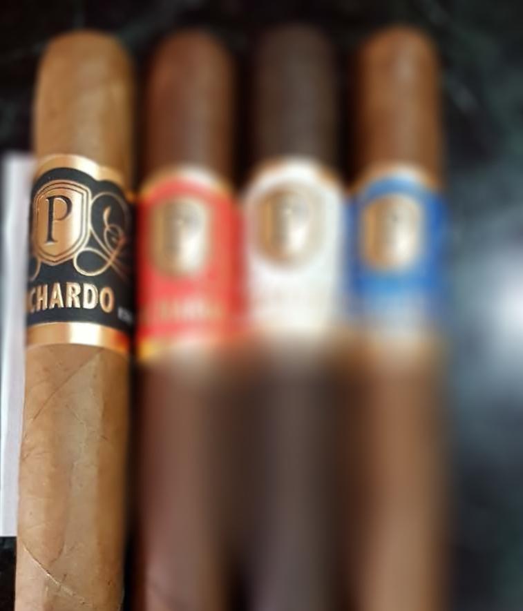 PICHARDO PURO CONECT.jpg