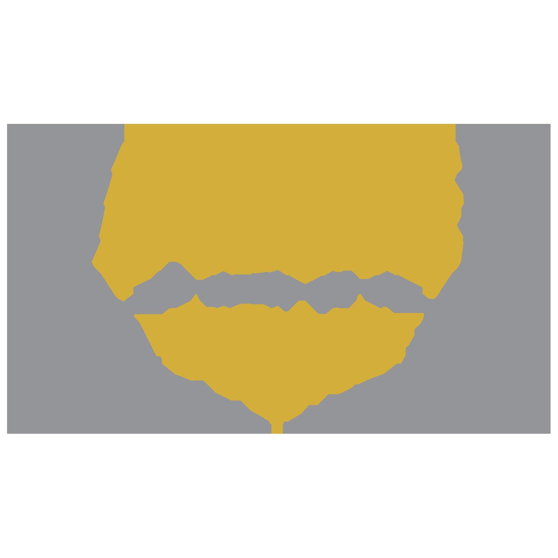 ACE-Banner-v3.png