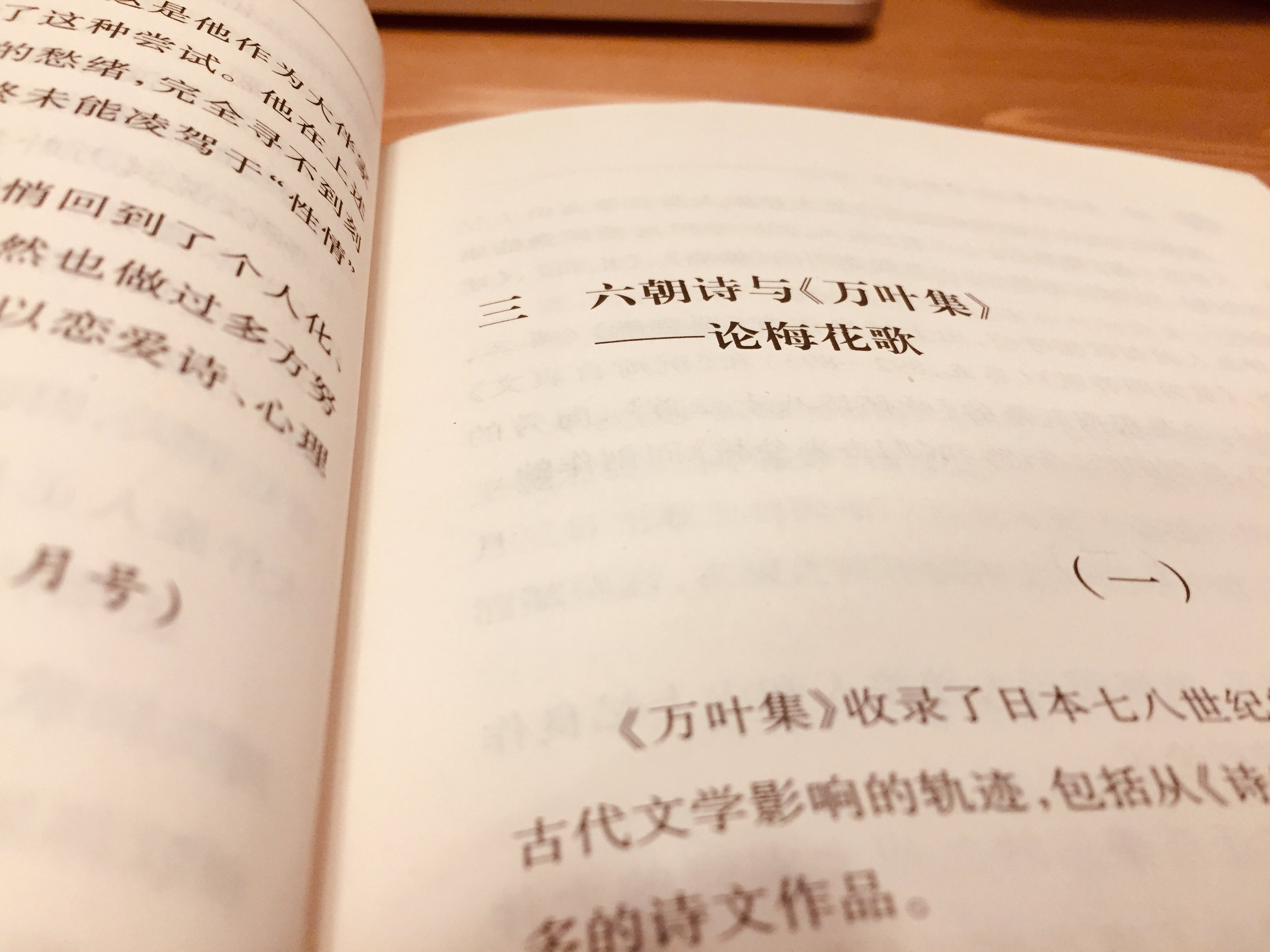 中西進著;劉雨珍、勾艷軍譯:《〈萬葉集〉與中國文化》