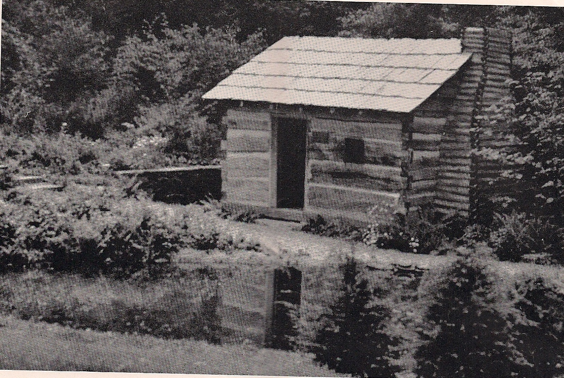 CABIN AND REFLECTING POOL - NOW A BOG AREA
