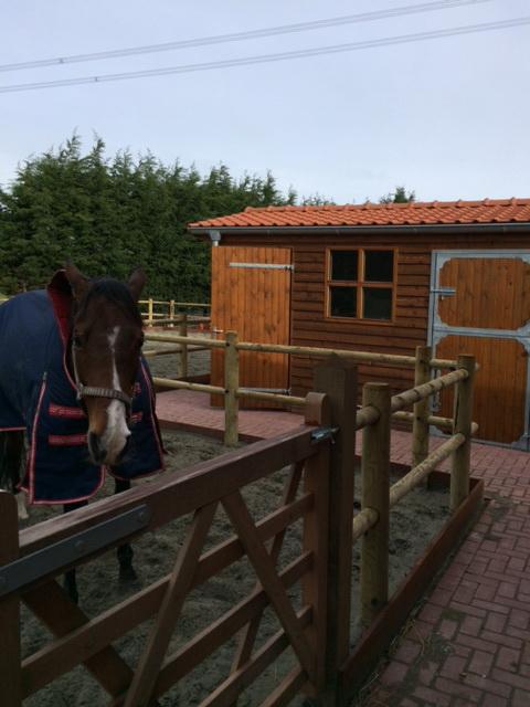 Compacte paardenstal voor uw pony Ascot Systeembouw Nederland