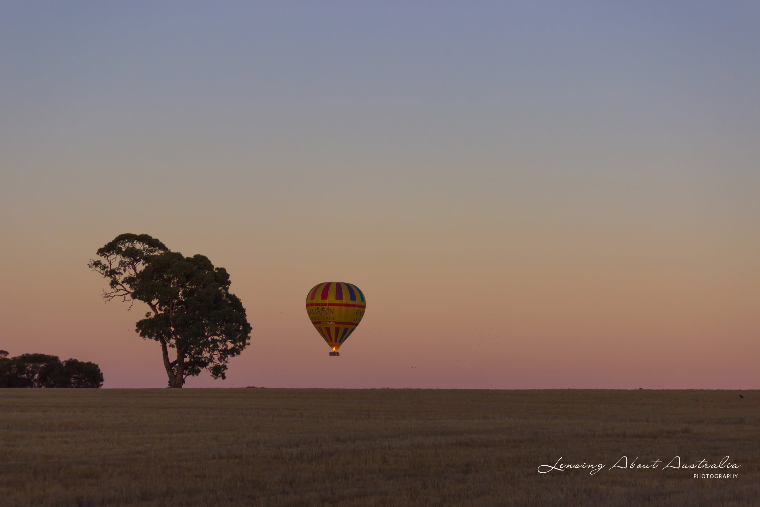 Hot Air Balloon over paddock, Barossa Valley, South Australia. https://www.lensingaboutaustralia.com