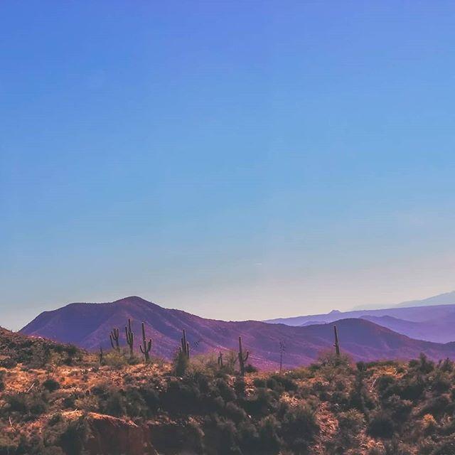 Somewhere around Superior, Arizona. Got to love those saguaro cacti! 🏜 #arizona🌵 #arizona_landscapes #arizonahighways #arizonalife #arizonaisgorgous #saguaro #saguarocactus #superioraz #landscapelovers #landscapesphotographer #landscapes_captures #westernusa #wildwest