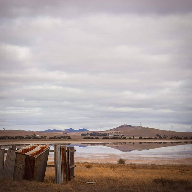 The old tin outback dunny standing watch over Porters Lagoon in South Australia's mid north. 🤠 #lagoons #lagoon #cloudyskies #rustymetal #dunny #outbackcollective #australianoutback #reflexión #reflectionphotography #reflection_shotz #inlandlake #saltwaterlake #calmwater #countrylifestyle #countryroads #seesouthaustralia #insidesouthaustralia #exploresouthaustralia