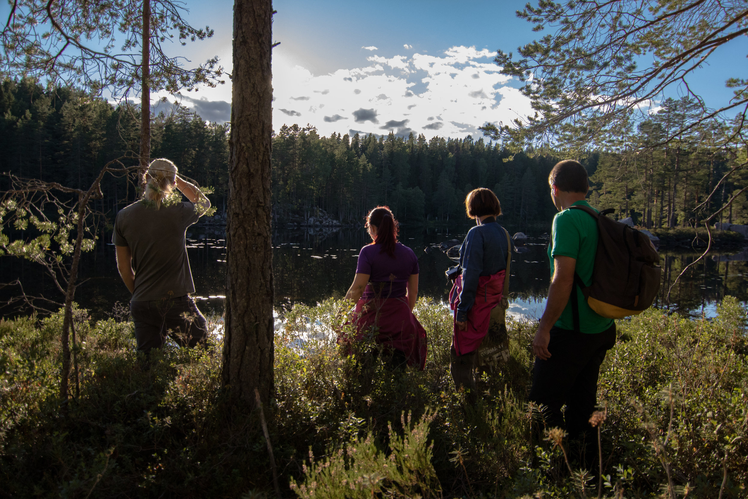 Guided hike in Moose forest. Photo: Simon Green