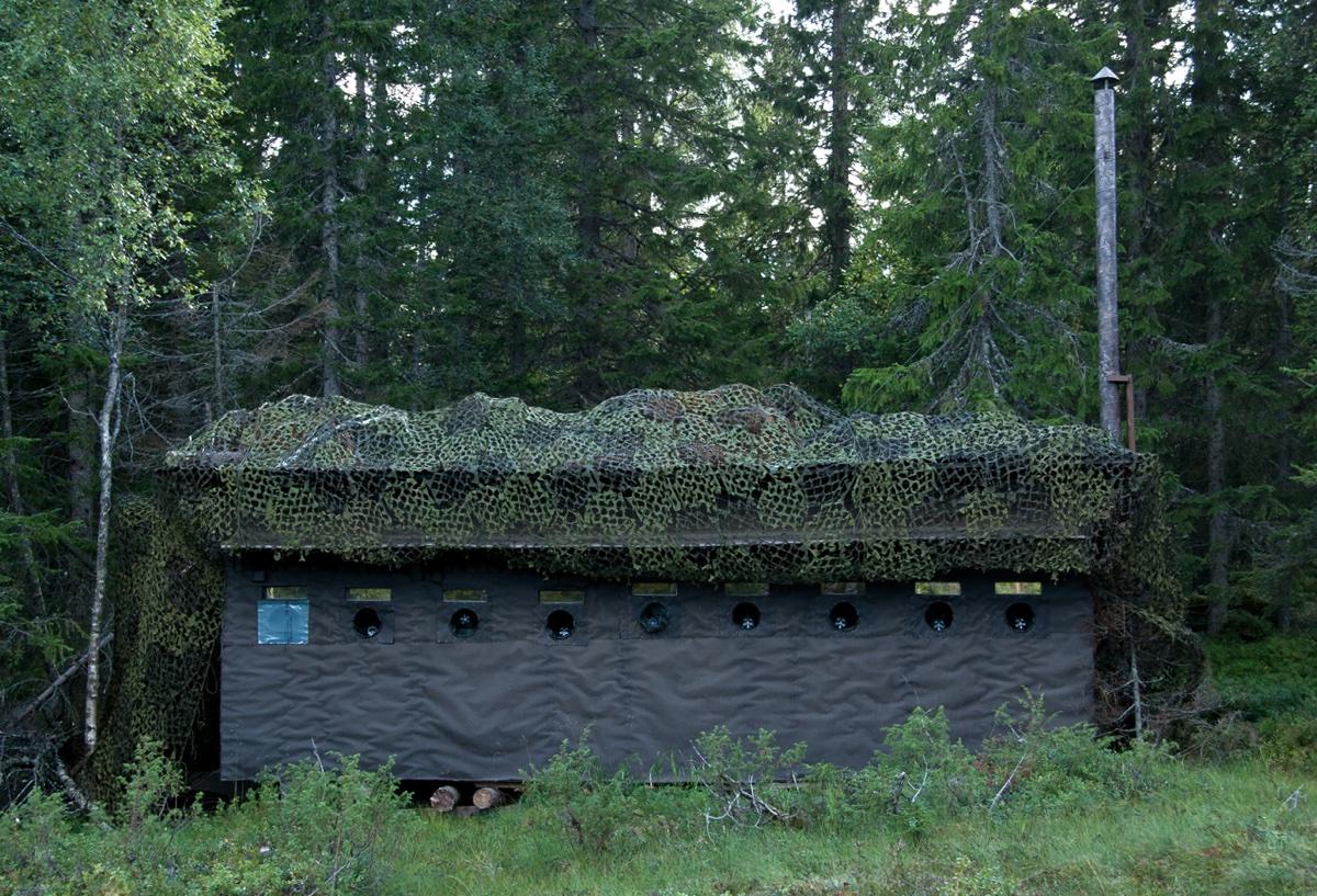 The photo cabin in Bollnäs. Photo: Håkan Vargas