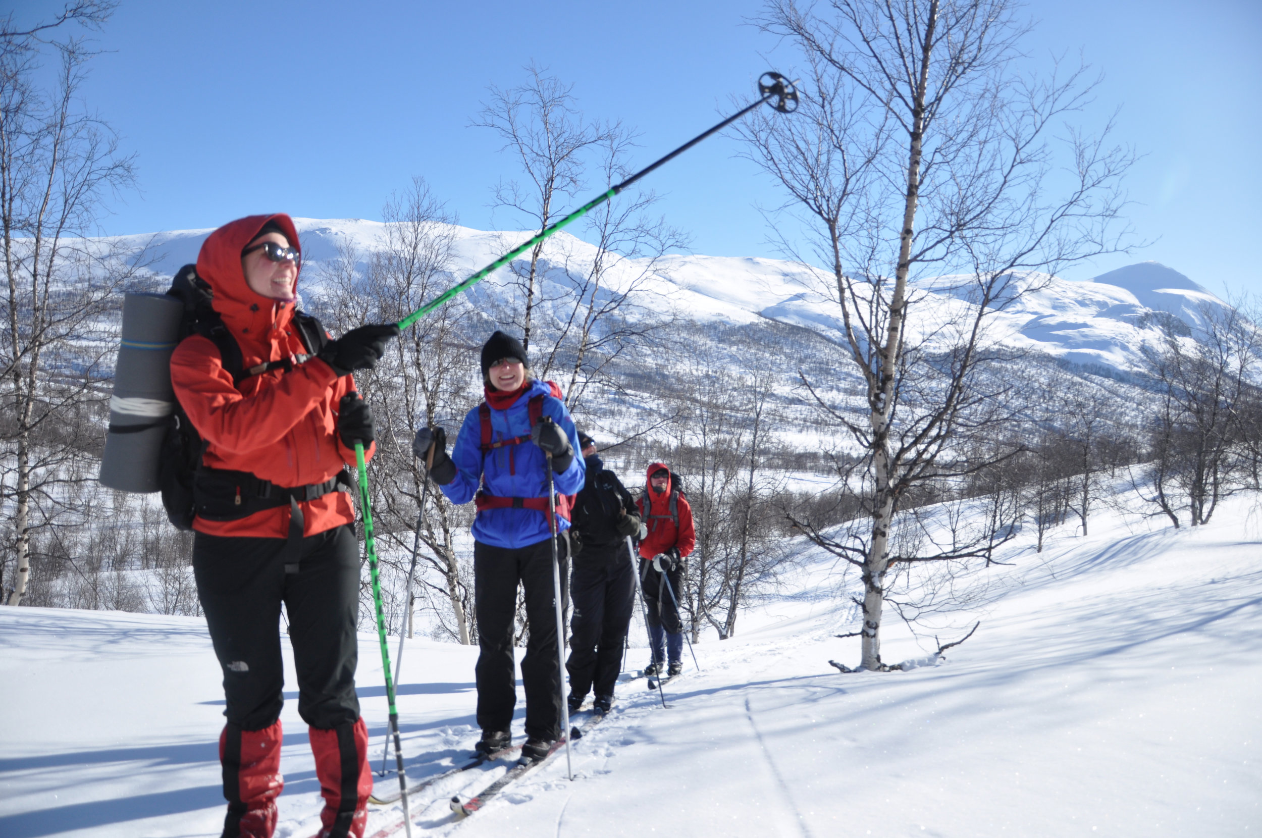 Nordic skiing and lynx tracking