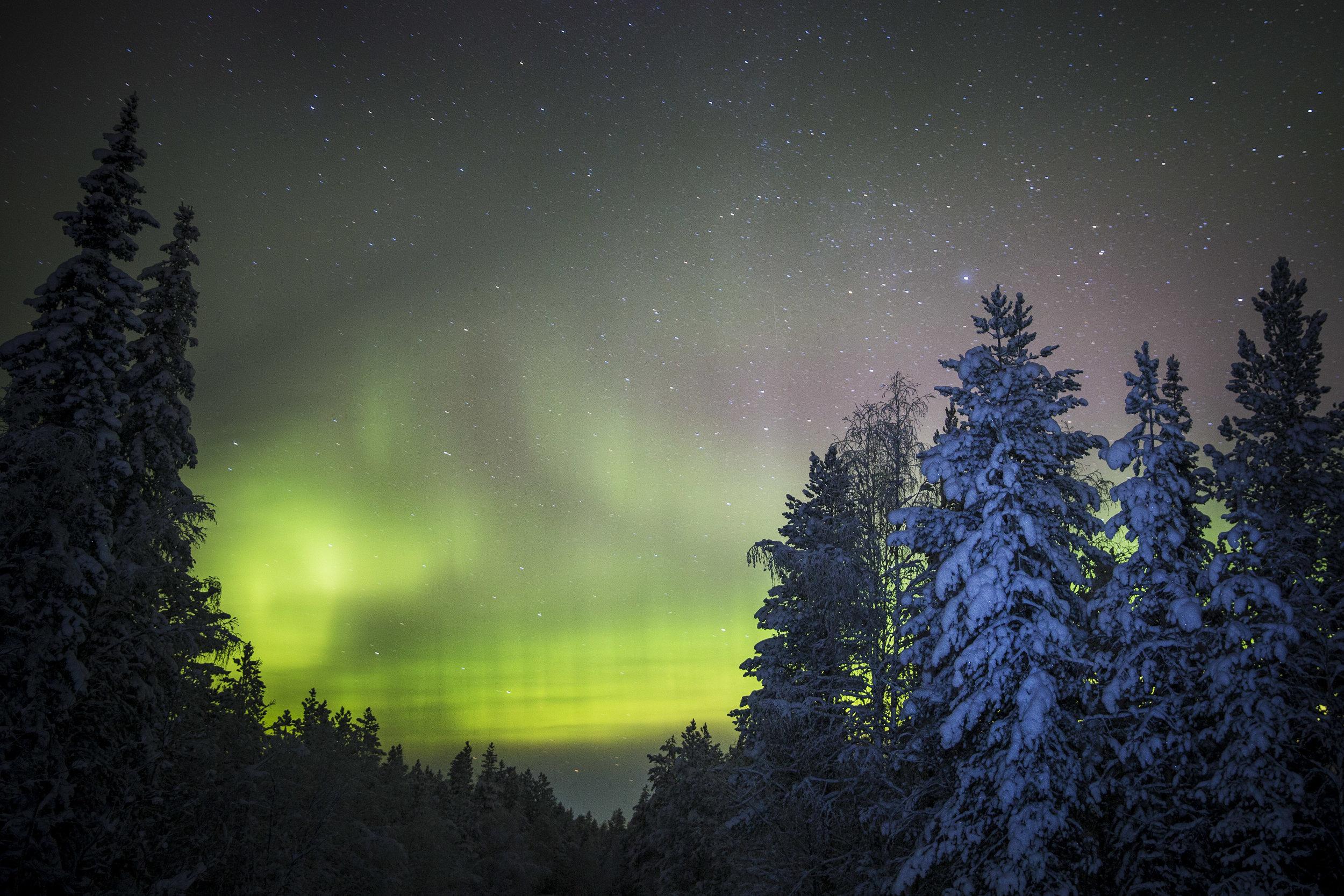 20190205 Lapland, Zweden. noorderlicht