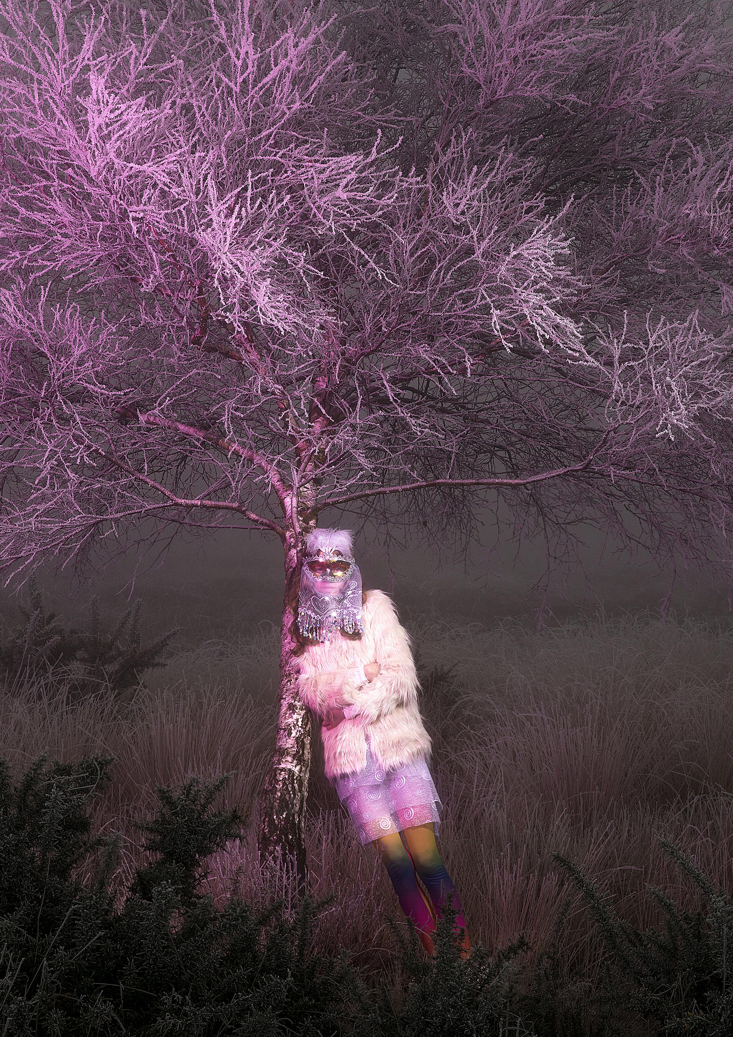 Snow Queen Magenta A4.jpg