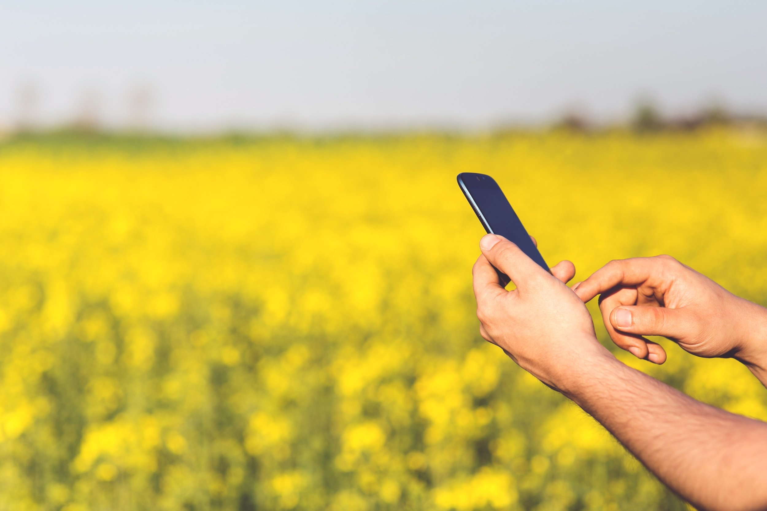 Agriculture and smartphone.jpg