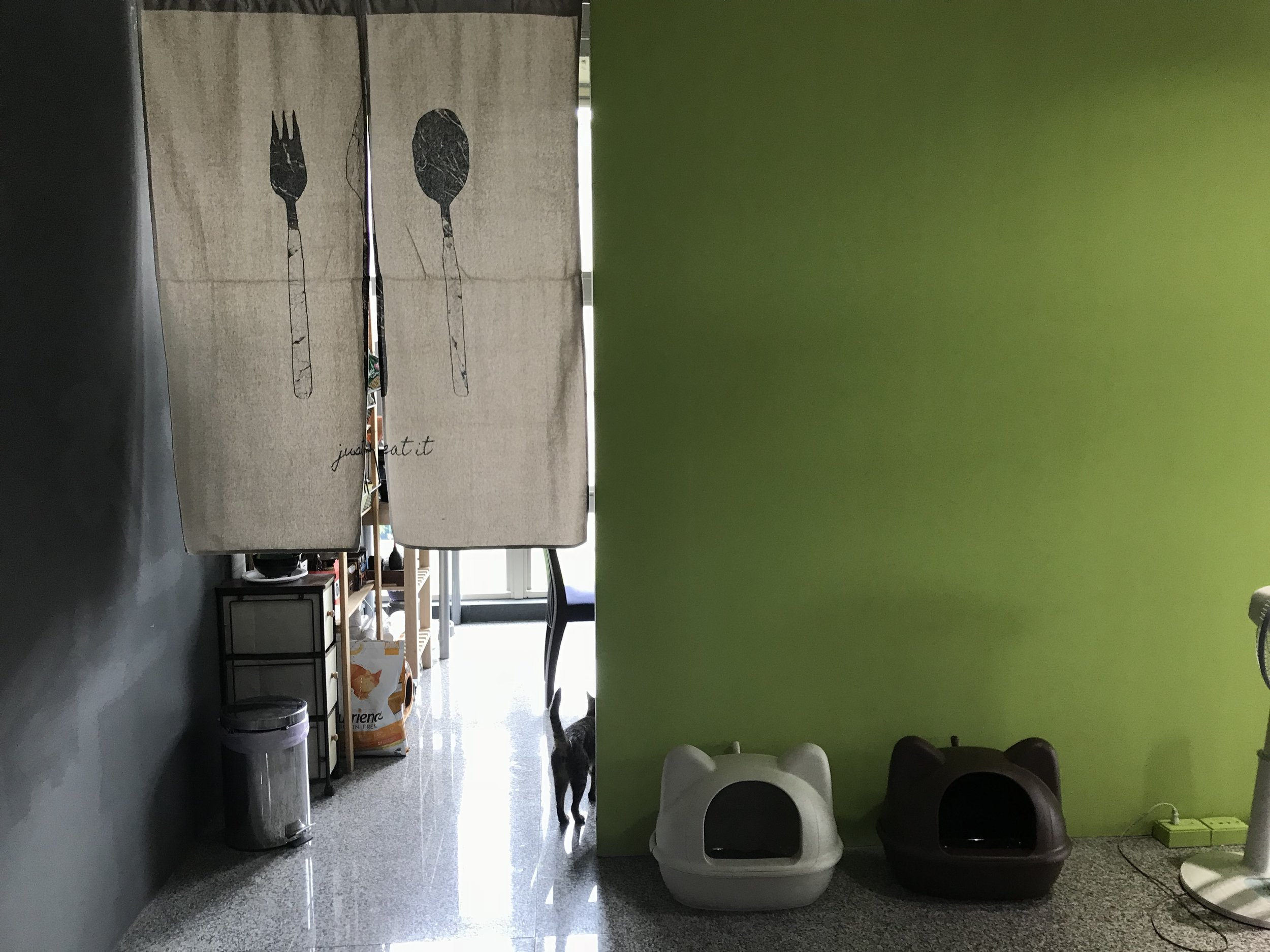 熱愛生活的辦公氣氛 - 專業手沖咖啡組和單品咖啡豆小廚房有電陶爐、大冰箱、微波爐等流行一起煮飯、一起帶便當隨時都有免費飲料零食供紓壓會有貓咪躺你鍵盤不讓你工作