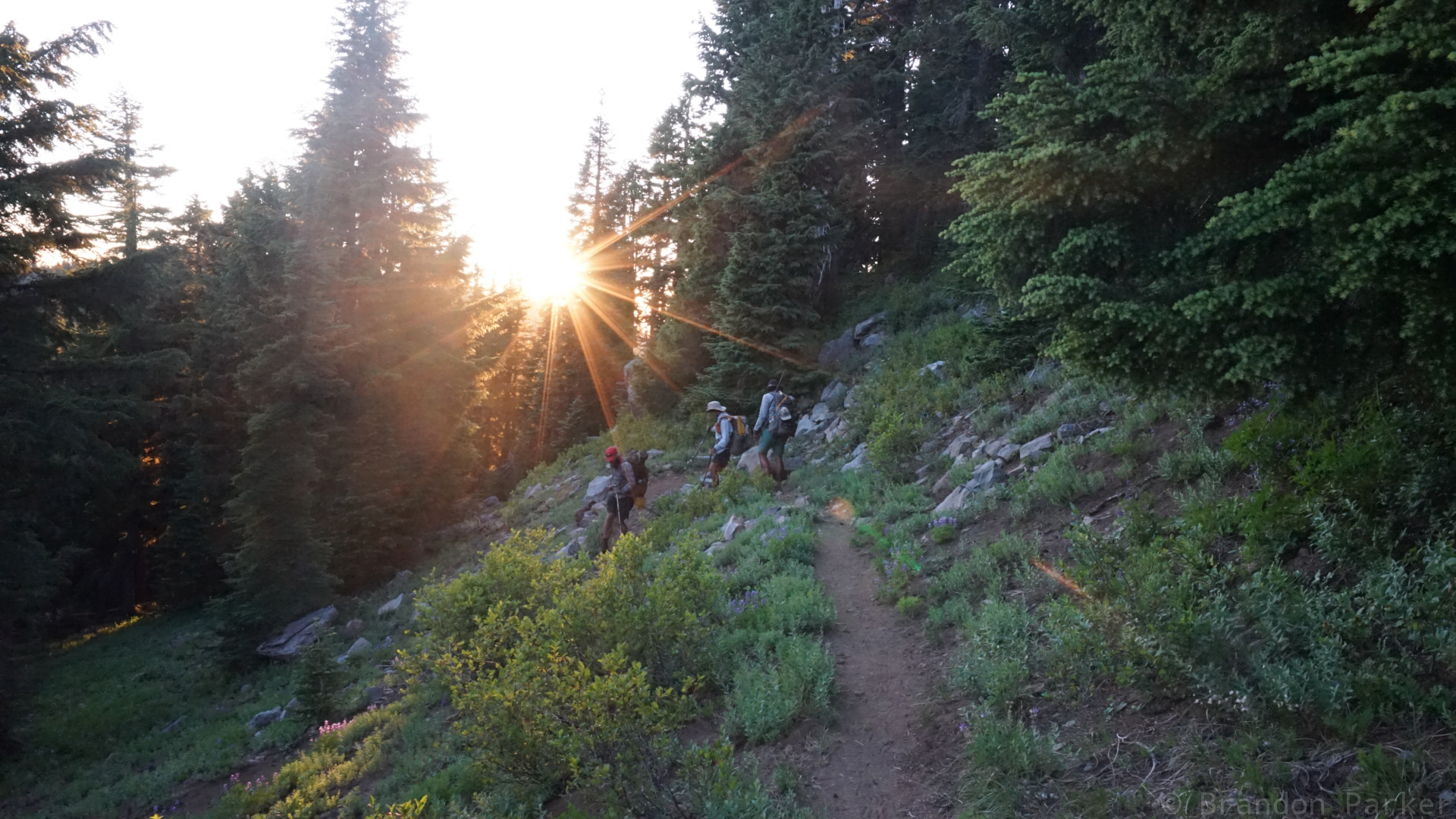 Hiking in the late afternoon sun