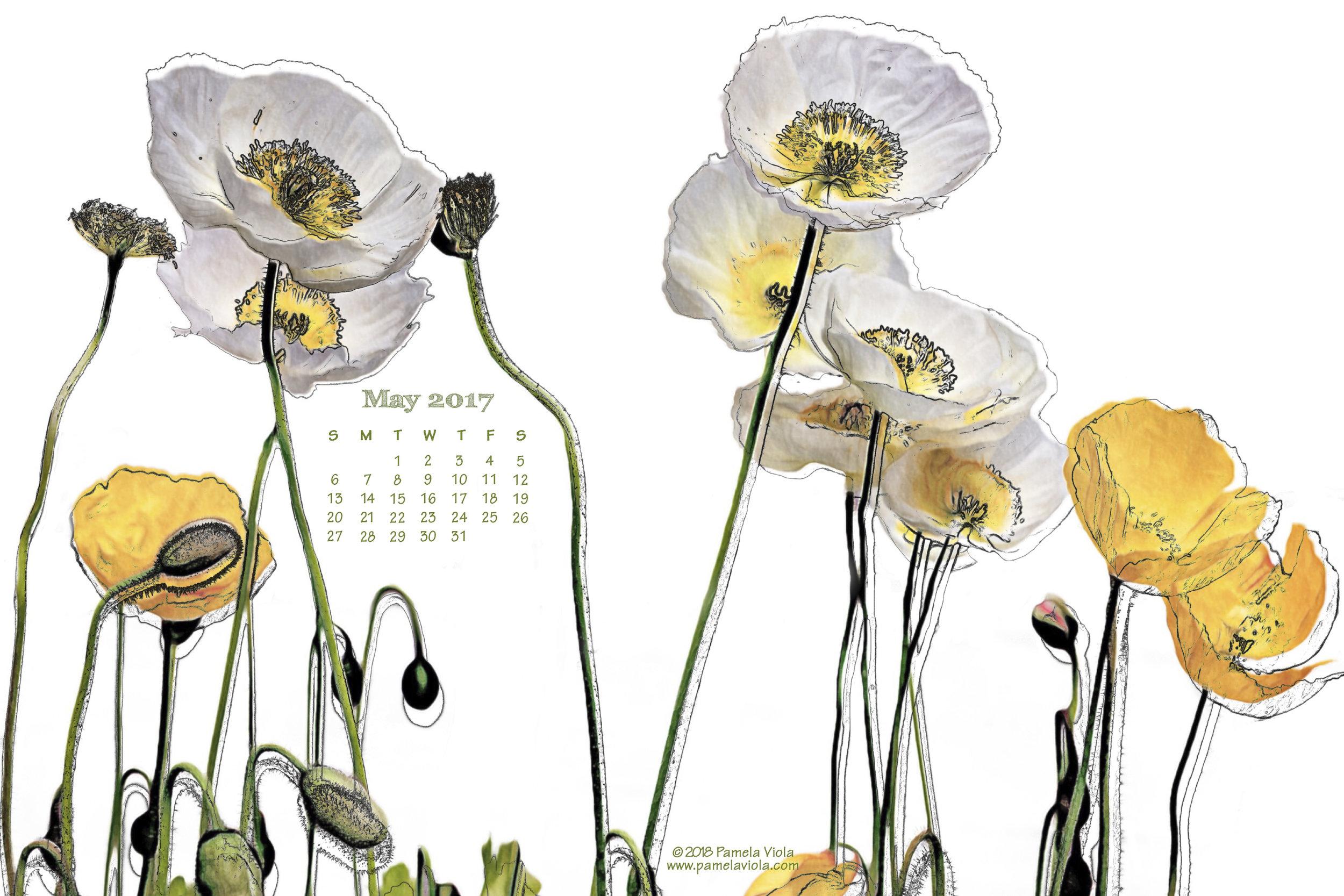 05 may 01 2018_Poppy Calendar.jpg