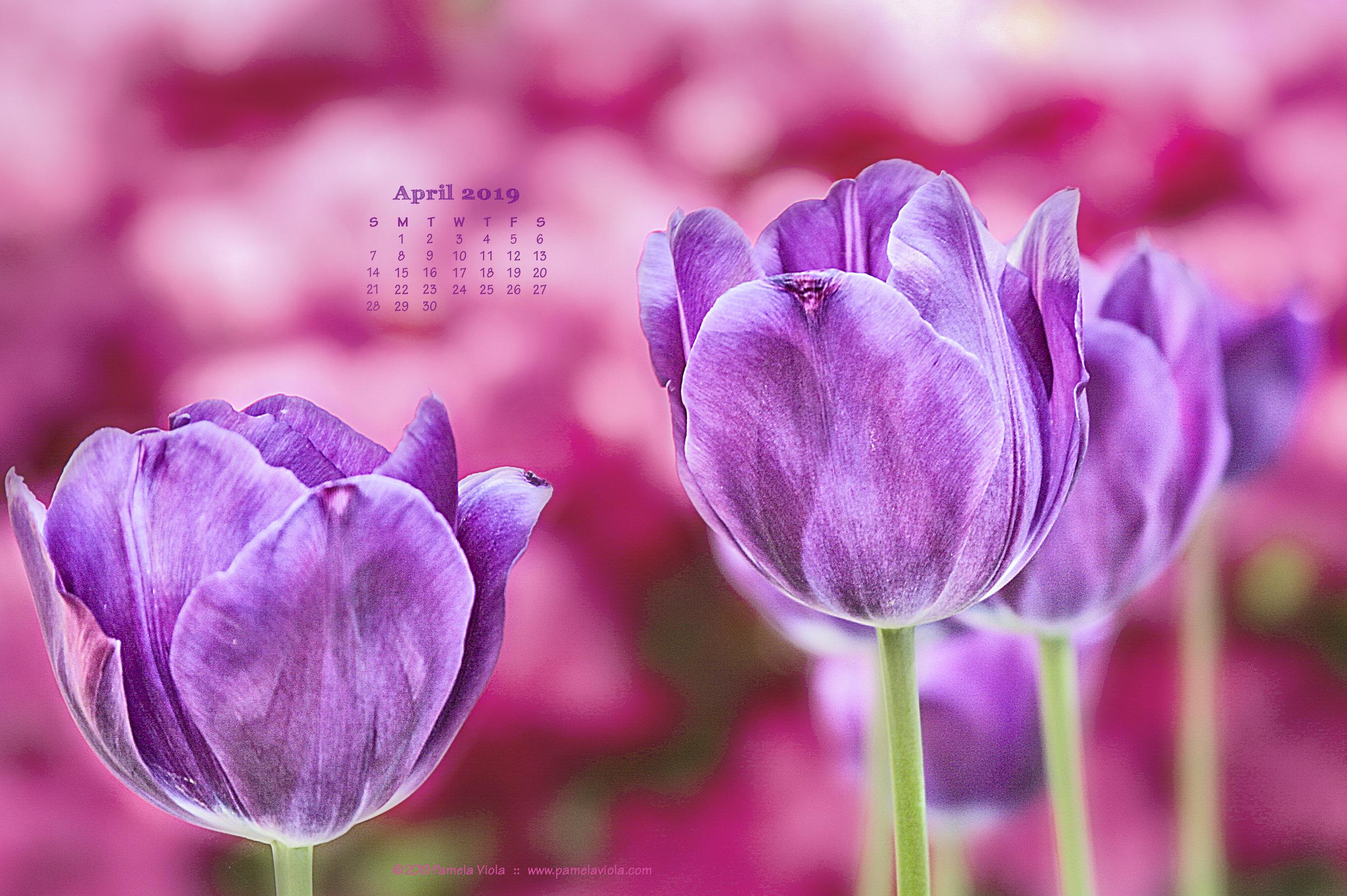 04 apr 01 2019_calendar.jpg