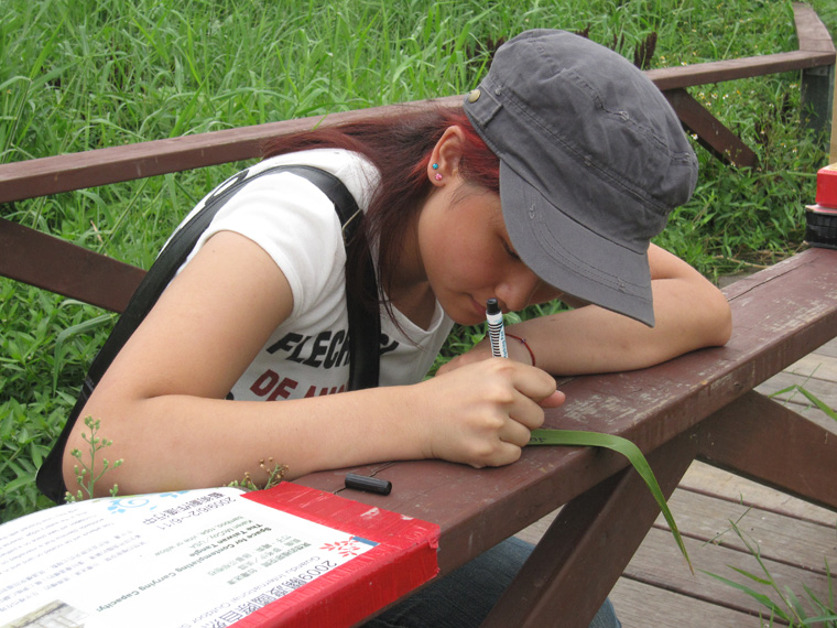 Visitors writing on reed leaves.