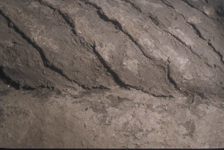 Detail of surface.