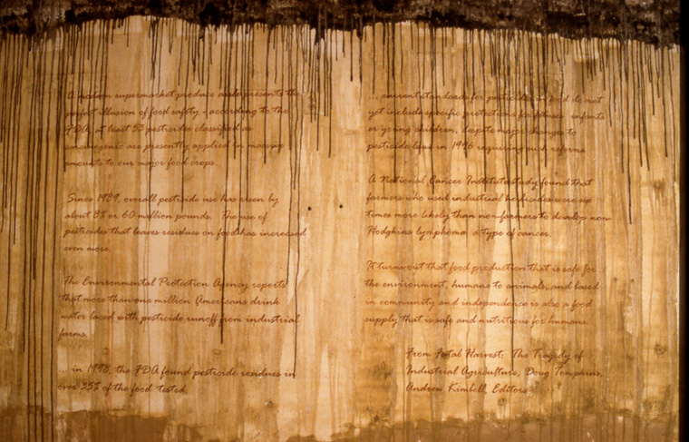 View of walls stained with local pigments and lettered with text from  Fatal Harvest,  into Doug Tompkins.