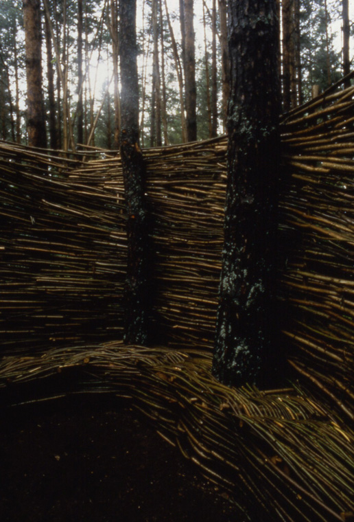 Detail of interior with  bench woven around living trees.