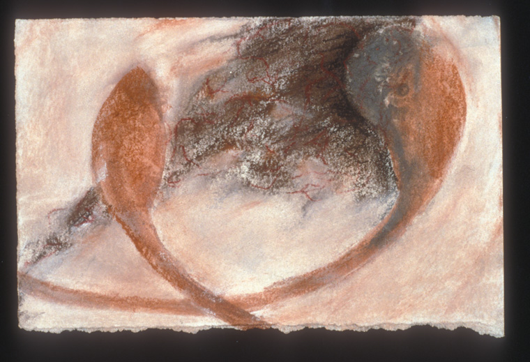 """Portrait of a Healing Ovary  1990  Mixed media on paper, 4 x 6"""""""